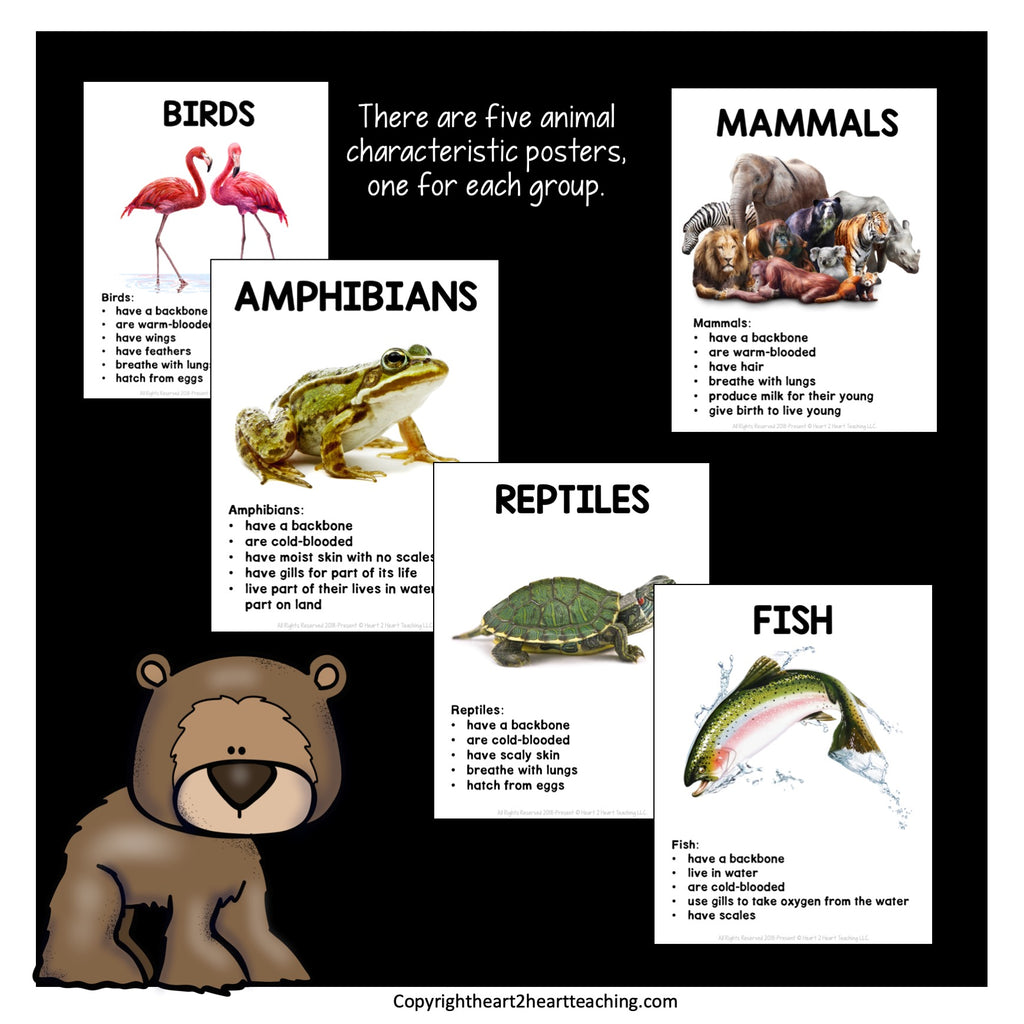 Animal Classification Unit with Mammals, Birds, Fish, Reptiles, and Amphibians