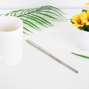 The NEW Metal Travel Straw