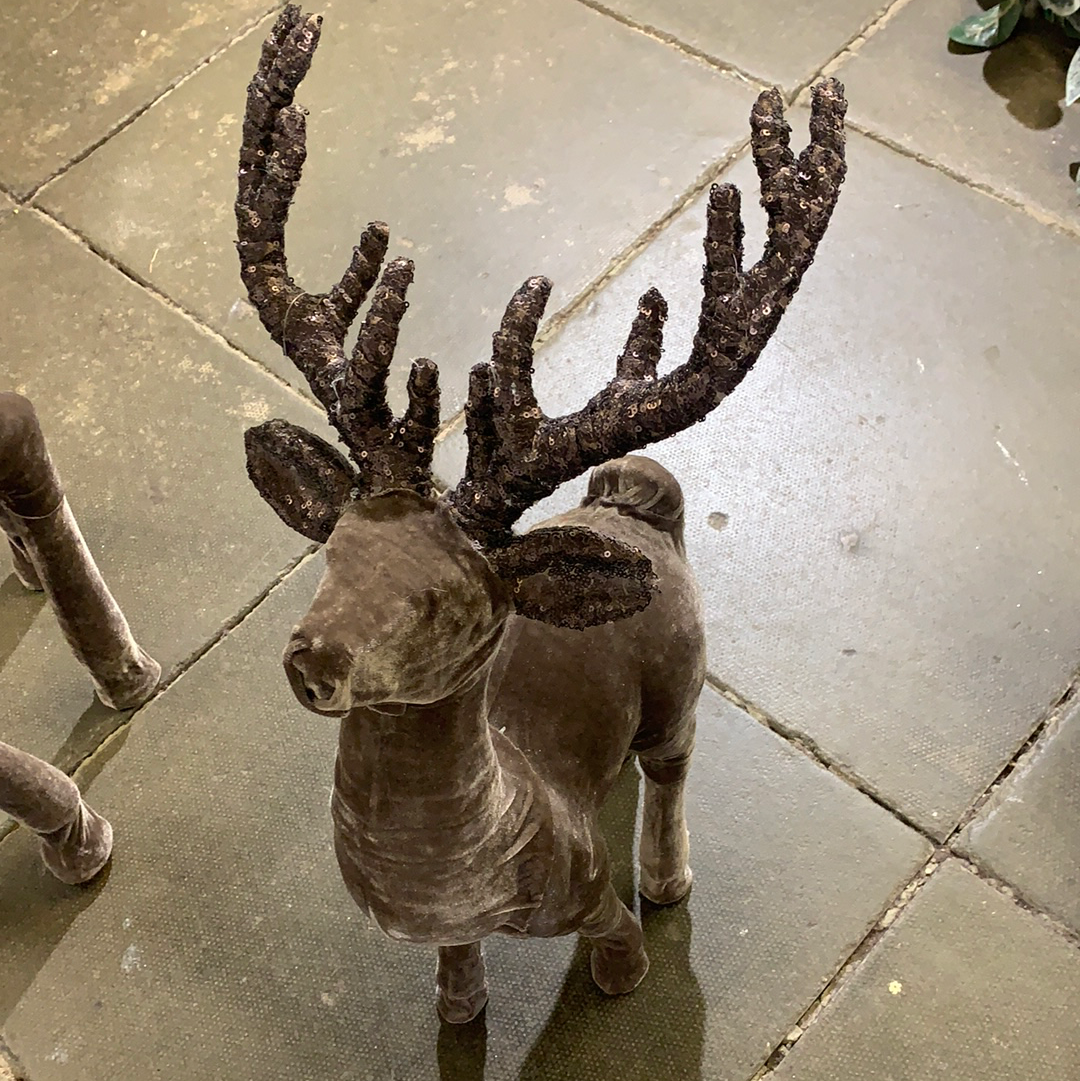 Small xmas stag