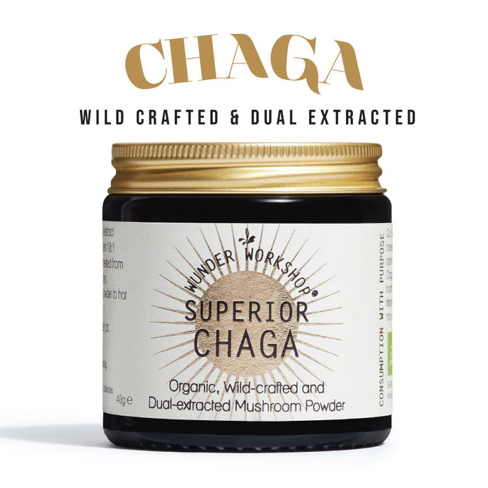 Spotlight on Chaga