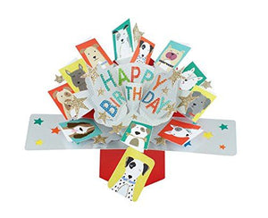 "Second Nature Birthday Pop Up Card with""Happy Birthday"" Lettering and Dogs"