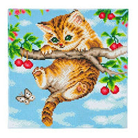 Crystal Art Cherry Kitten 30x30cm Framed Crystal Art Kit