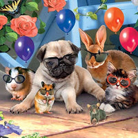 Animals in Glasses Birthday Card 3D Lenticular