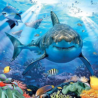 Shark Birthday Card 3D Lenticular