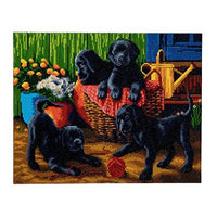 Crystal Art Black Labrador Pups 40 x 50 cm Landscape Framed Crystal Art Kit