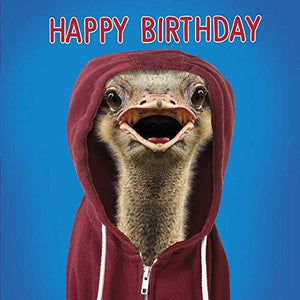 Ostrich in Hoodie Greeting Card Lenticular 3D