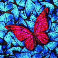 Crystal Art Butterfly Card