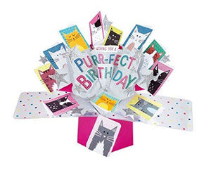 "Pop Ups Birthday Pop Up Card with""Purr-FECT Birthday"" Lettering and Cats"
