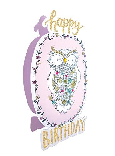 Paper Dazzle Owl Happy Birthday 3D Birthday Greeting Card Glitter Finished PDZ024