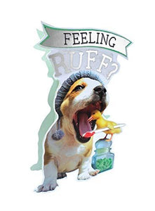 Paper Dazzle Get Well Soon Feeling Ruff 3D Greeting Card Glitter Finished PDZ039