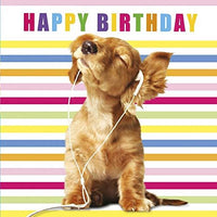 Puppy Dog in Earphones Greeting Card Lenticular 3D