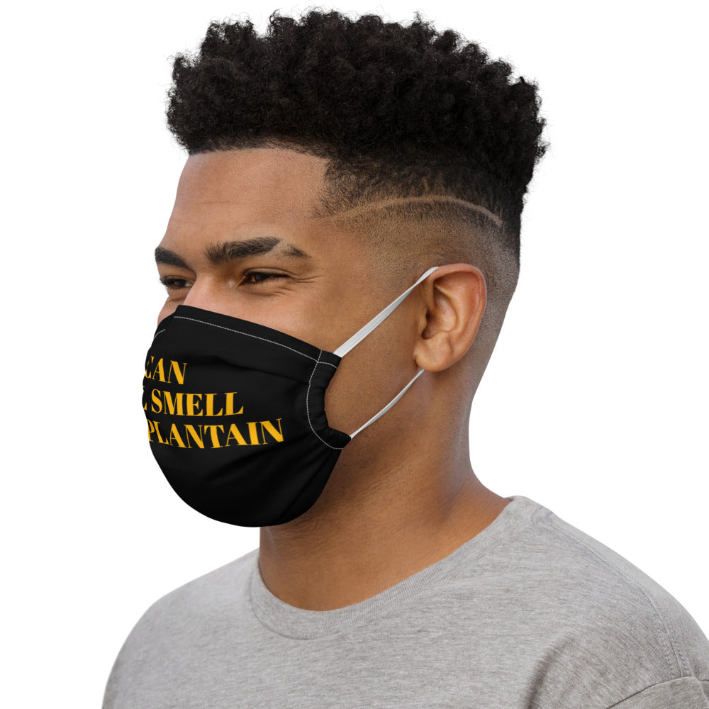 """I Can Still Smell Fried Plantain"" Premium face mask"