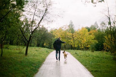Man walking with dog on a cold weather
