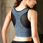 Women's Seamless High Impact Sports Bra with Removable Cups-sports bra-Trendy-JayBoutique-pink-S-Trendy-JayBoutique