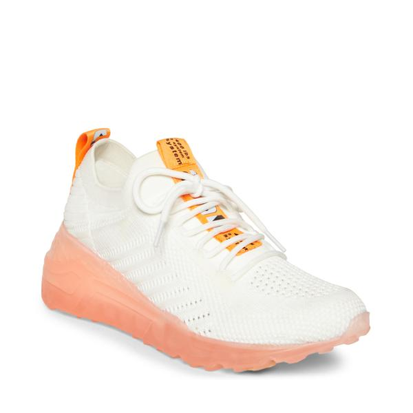 Cello ORG MULTI SNEAKERS by STEVE MADDEN