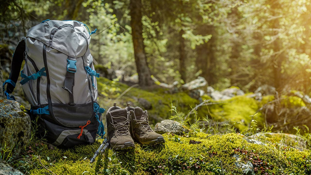 Backpack and Shoes in Forest