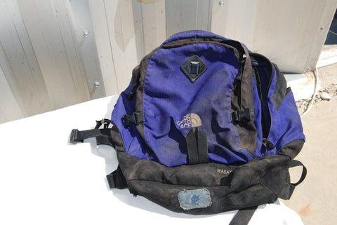 North Face Daypack-Purple/Blue