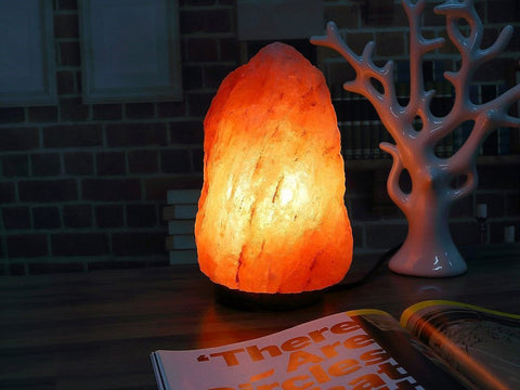 Himalayan Natural Salt Lamp (8KG) - PAKTEC