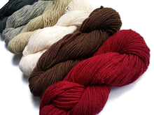 Load image into Gallery viewer, One skeins of Rustic Wool Three ply 5 colors available