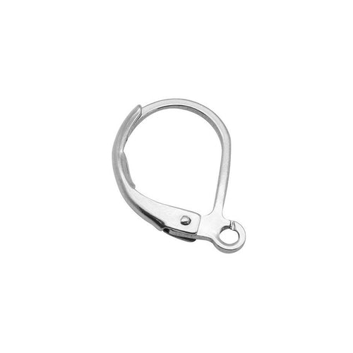 Stainless Lever Back Hoop earring hooks 10pcs (5 pairs) Hypoallergenic