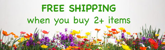 Free shipping when you buy 2+ items