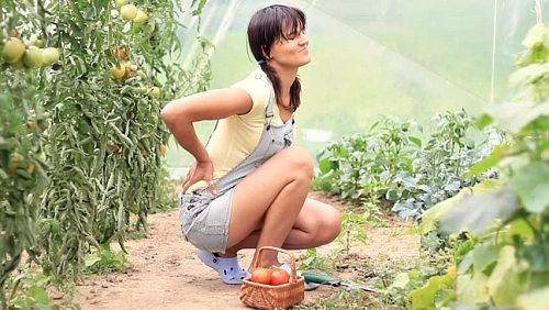 how to treat lower back pain gardening