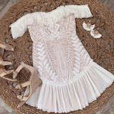 Ruffle Trim Embroidered Mesh Dress