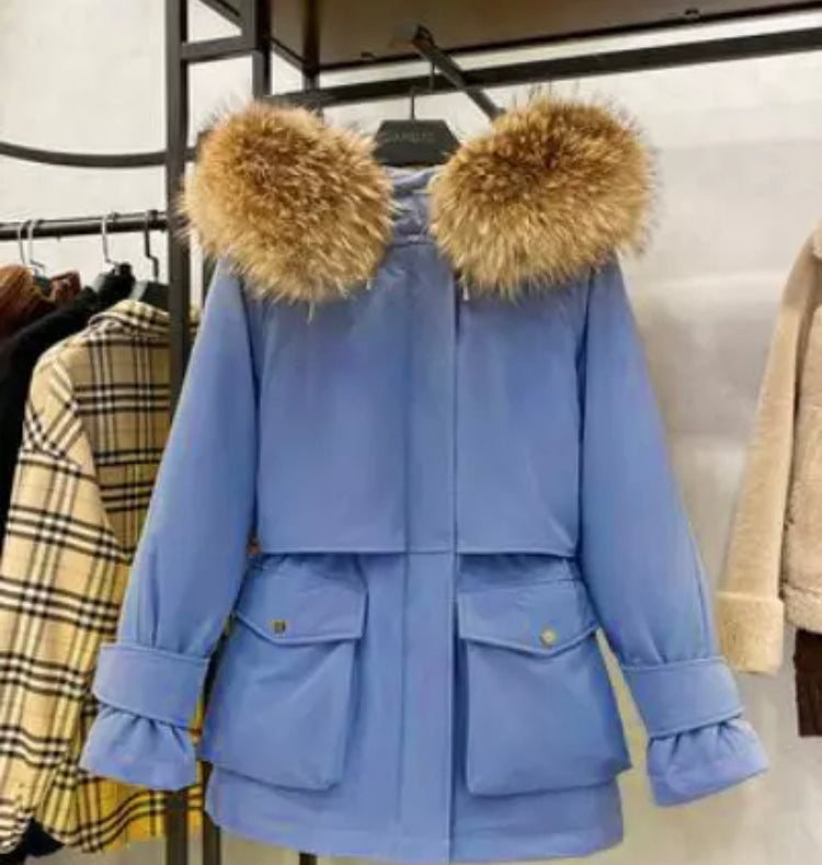 Blue Parka Coat (More options)