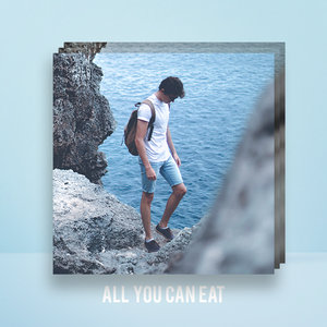 ALL YOU CAN EAT BUNDLE | ADOBE LIGHTROOM PRESETS PACK | Matt 'n' Seb