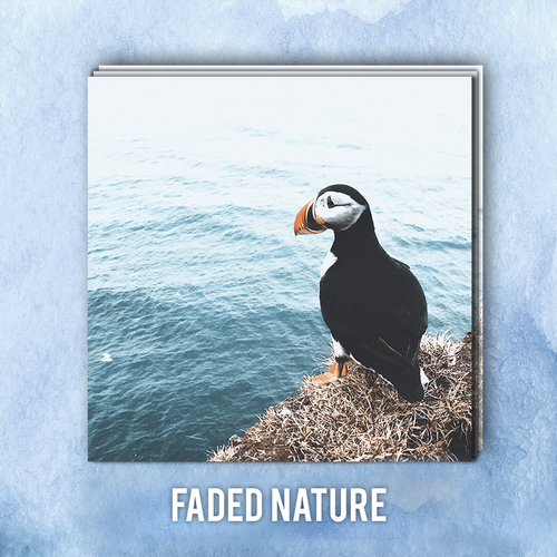 Faded Nature | ADOBE LIGHTROOM PRESETS PACK | Matt 'n' Seb