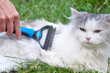 Load image into Gallery viewer, Detangler Pet Pro Grooming Tool