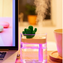 Load image into Gallery viewer, Cactus Humidifier