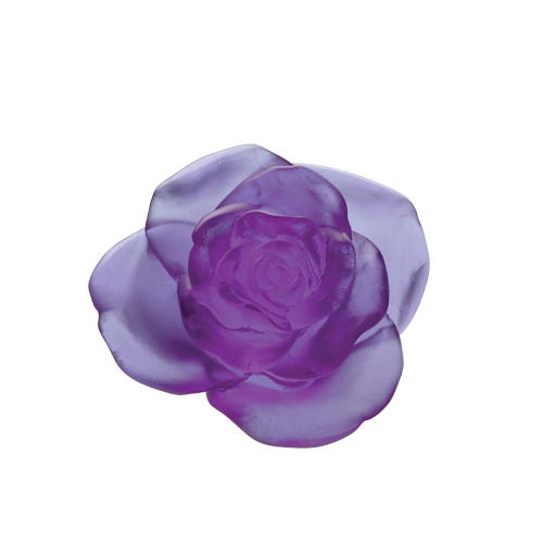 Ultraviolet decorative flower Rose Passion