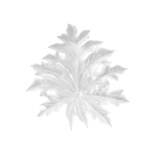 Bornéo Small Wall Leaf in White by Emilio Robba