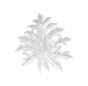 Small Long-Fixture Bornéo Wall Leaf in White by Emilio Robba