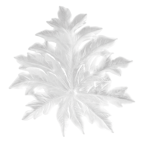 Bornéo Large Wall Leaf in White by Emilio Robba