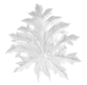 Large Bornéo Wall Leaf in White by Emilio Robba