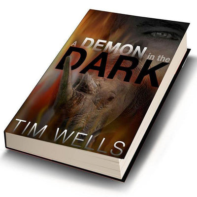 A Demon in the Dark (Paper Back)