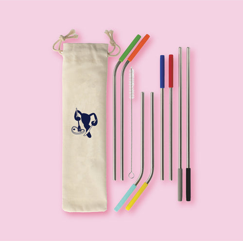 Stainless Steal Reusable Straws - 8pcs