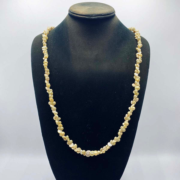 necklace made from sea shells in Southern Africa