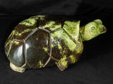 Turtle artwork