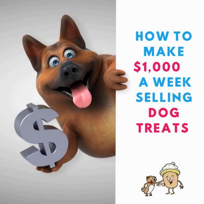 Can you Make Money Selling Dog Treats?