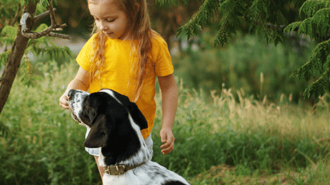 Dog Safe Treats that kids can eat