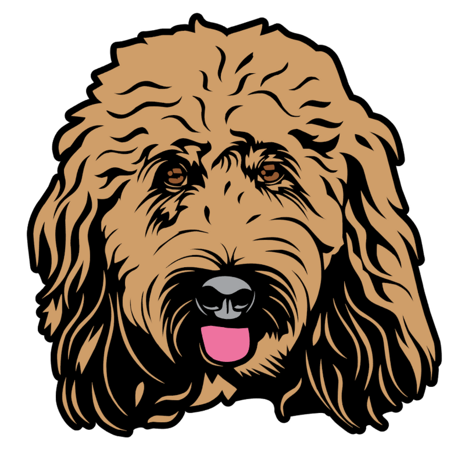 Goldendoodle Face Acrylic Blank