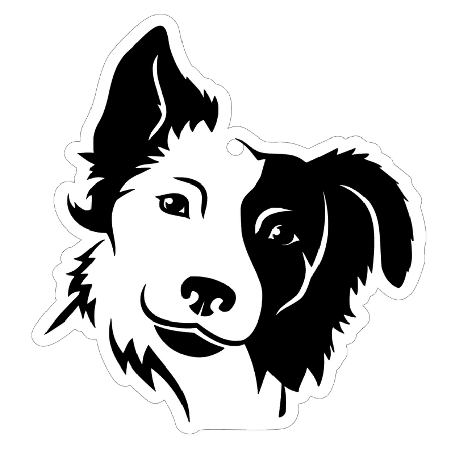 Border Collie Face Dog Acrylic Blank
