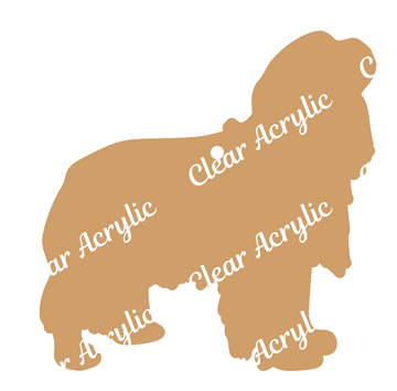 Cavalier King Charles Acrylic Blank for keychains