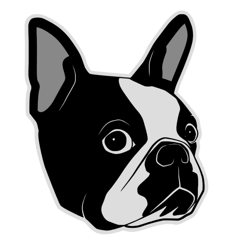 Boston Terrier Face Acrylic Blank