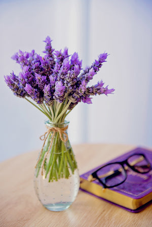 The Ancient History of Lavender