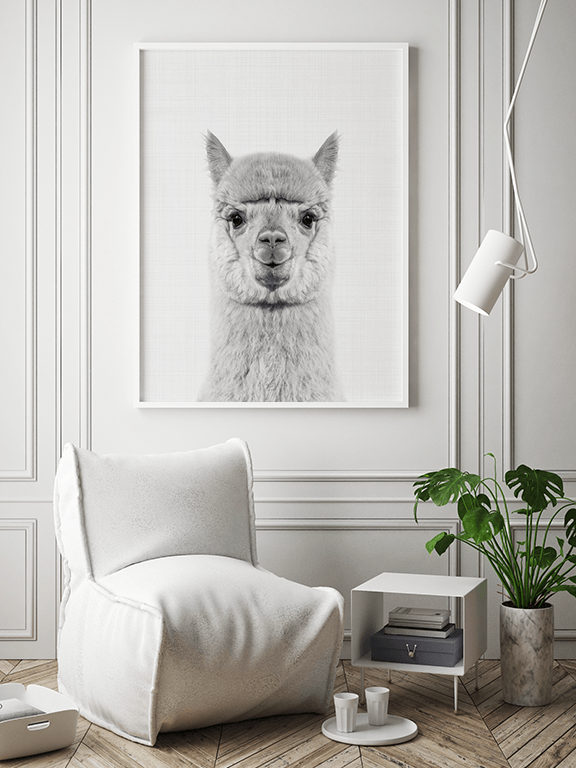 Alpaca Wall Art Print in Black and White - PRRRINT