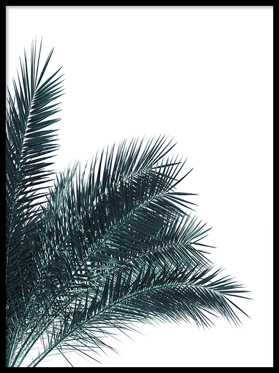 Blue Palm Leaves No3 Print - PRRRINT